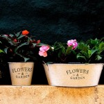 Tip-Top-Flower-Pots-600_300