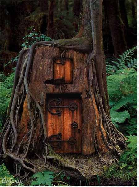 Old Tree Stump Ideas (10)