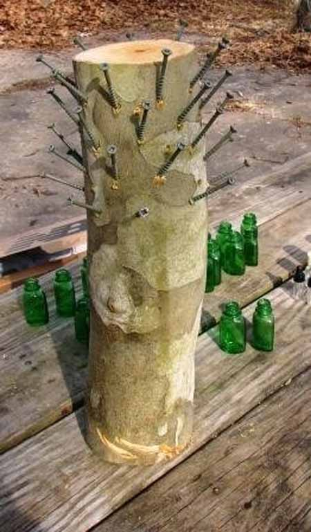 Old Tree Stump Ideas (13)