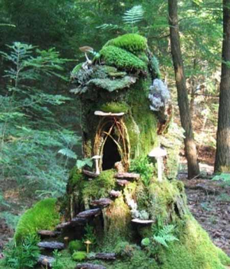 Old Tree Stump Ideas (15)