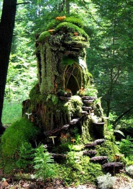 Old Tree Stump Ideas (33)
