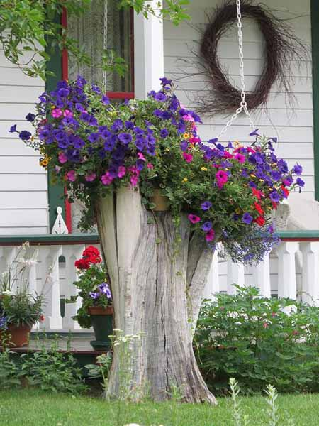 Old Tree Stump Ideas (5)