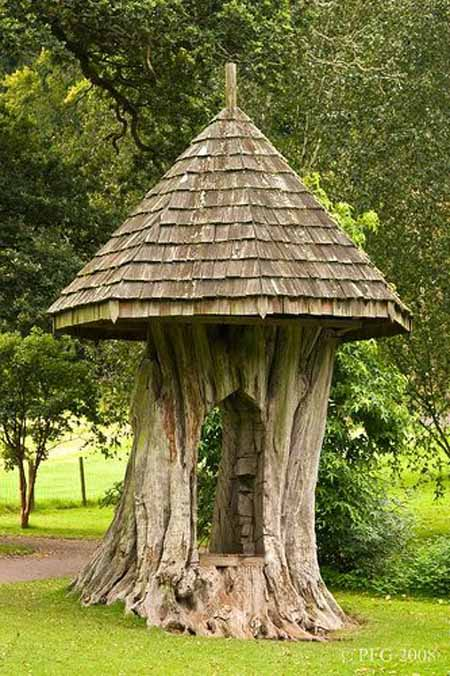 Old Tree Stump Ideas (8)