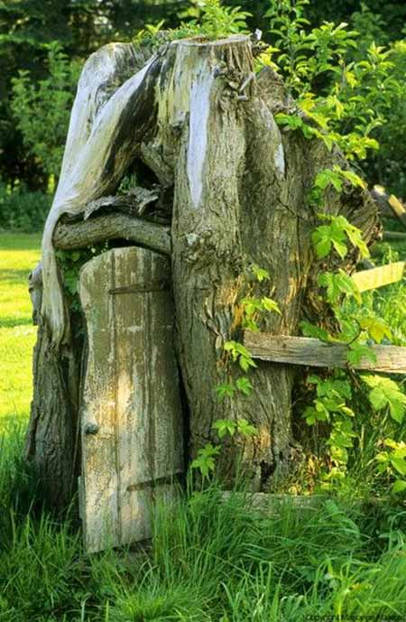 Old Tree Stump Ideas (9)